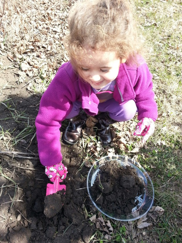 Digging up dirt; a toddler's paradise.